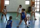 Τουρνουά Mini Volley